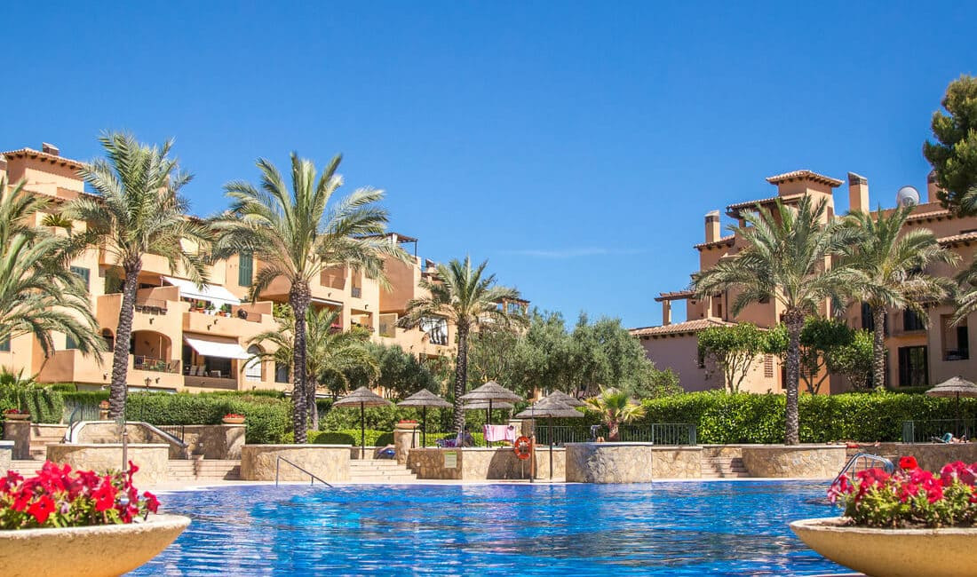 SEO продвижение сайта продажи недвижимости в Испании - кейс iPapus Agency
