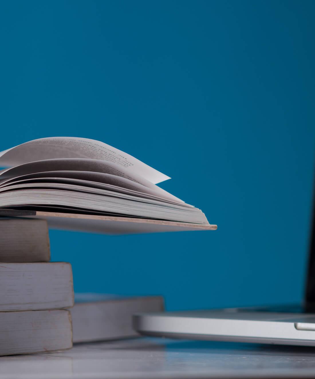39 заявок за 3 недели для Онлайн Школы - кейс iPapus Agency